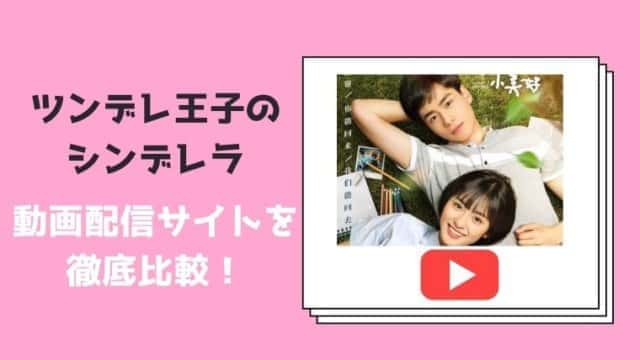 【ツンデレ王子のシンデレラ】の動画配信サービスを比較!無料で視聴できるのは?